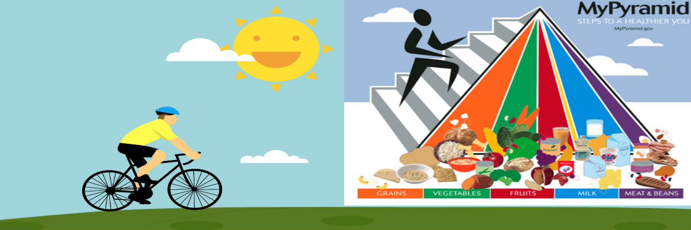 Food Pyramid 2020